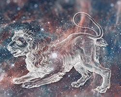 The Twelve - Leo The Lion